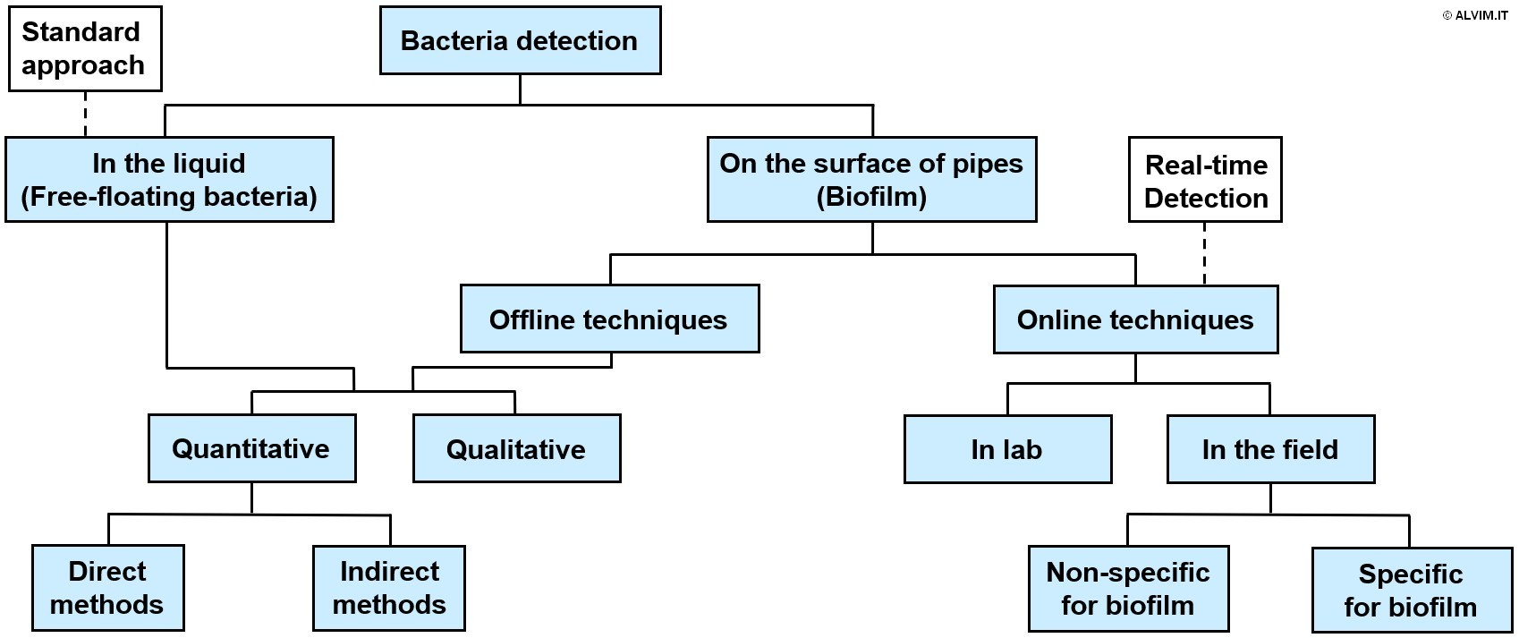 Different categories of bacteria detection methods and techniques
