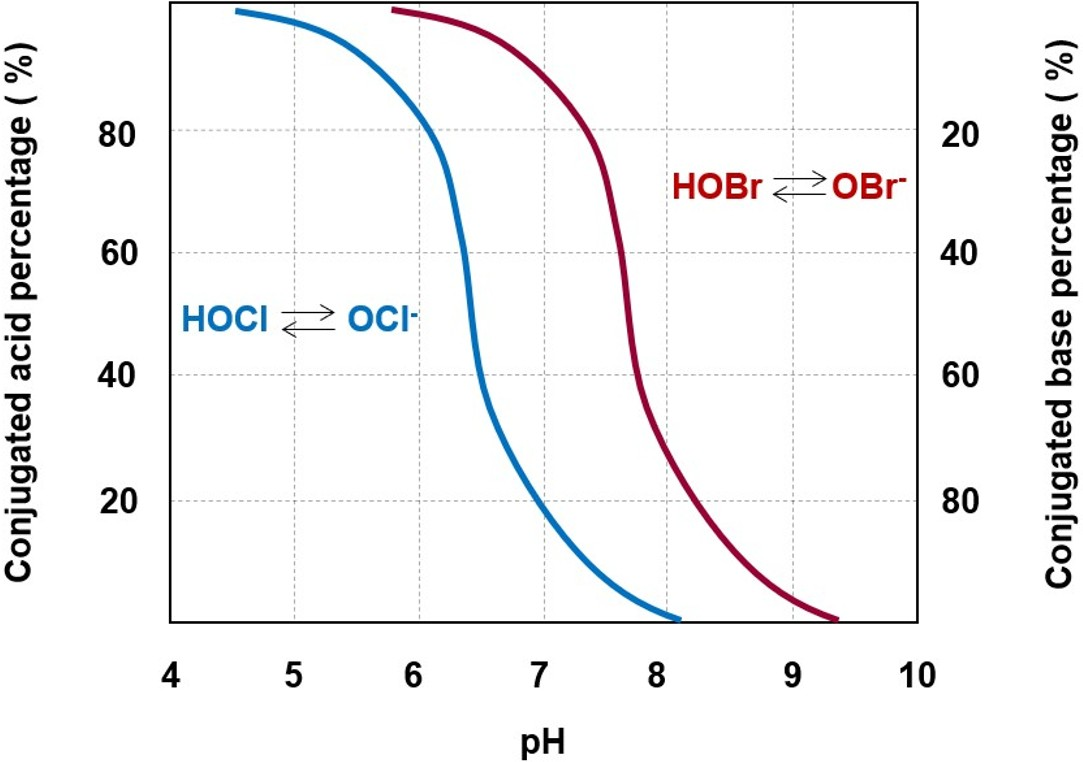 Different dissociation trends of hypochlorous acid and hypobromous acid